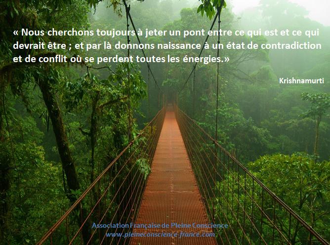 nous tentons de jeter un pont entre ce qui est et ce qui devrait être, d'où un état de contradiction